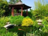 Bật mí những loại cây cảnh hợp phong thủy dựa theo hướng của sân nhà