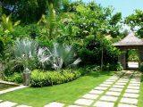 Những loại cây phong thủy sẽ mang tài lộc tới cho gia chủ nếu được trồng ở mặt tiền sân nhà
